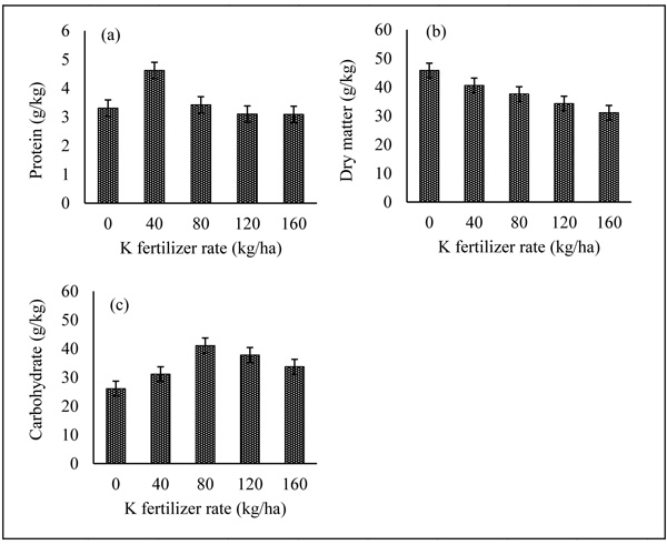 Impacts of Microbial Inoculants on the Growth and Yield of
